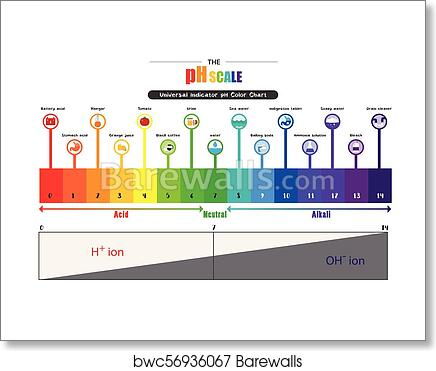the ph scale universal indicator ph color chart diagram, art print