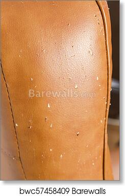 Scratches From Cat Claws On Leather Furniture Close Up Art Print