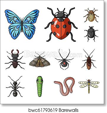 87b2ca3828274 Different kinds of insects cartoon icons in set collection for design.  Insect arthropod bitmap symbol stock web illustration