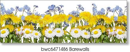 Art Print Of Real Spring Flowers Border Barewalls Posters Prints