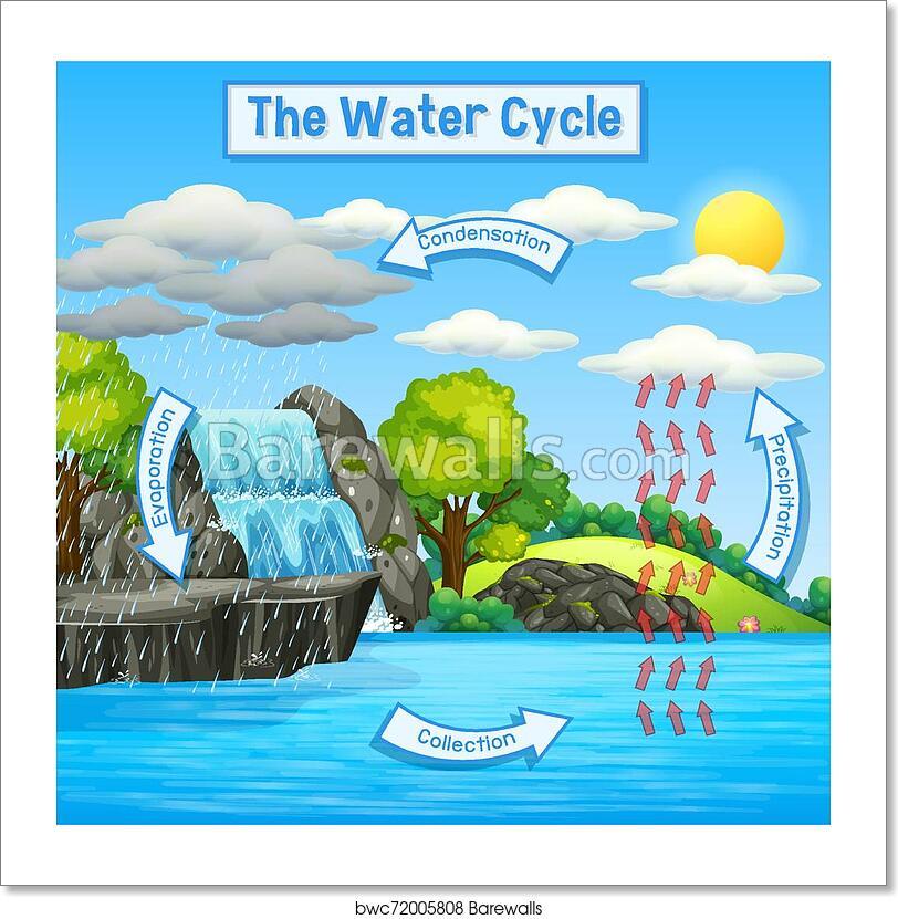 Water Cycle Of Earth Art Print Barewalls Posters Prints Bwc72005808
