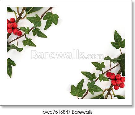 art print of holly and ivy abstract border barewalls posters