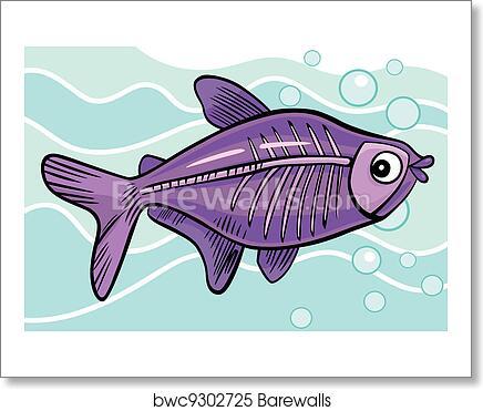 Cartoon X Ray Fish Art Print Barewalls Posters Prints Bwc9302725