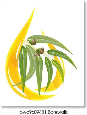 Eucalyptus essential oil art print poster