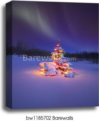 Christmas Tree Glowing Under The Northern Lights By Carson Ganci