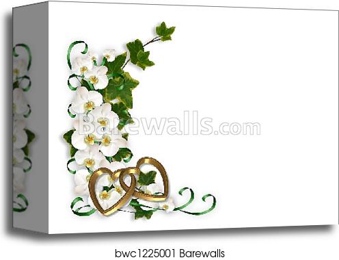 canvas print of orchids and ivy border barewalls posters prints