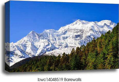 magestic MOUNTAIN and VALLEY scenic photo poster NATURE COLLECTORS 24X36 new