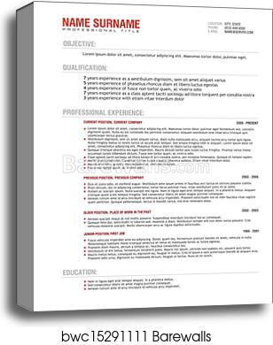 Professional Resume Template Vector Canvas Print
