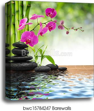 """Purple Orchid with Bamboo and Black Stones Canvas Prints 12/"""" x 18/"""""""