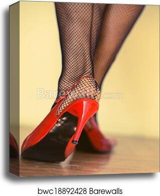 193675149d5 Female legs in heels and fishnets canvas print