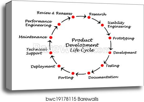 Canvas Print Of Product Development Life Cycle Barewalls Posters
