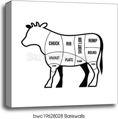 Canvas Print Of Beef Cuts Chart Cow Isolated On White Background