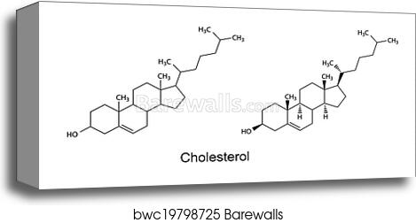 Structural Formulas Of Cholesterol Canvas Print Barewalls
