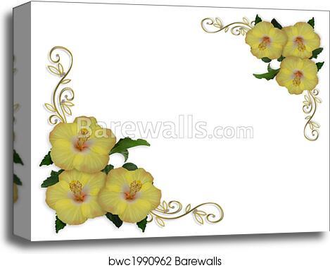 Hibiscus Flowers Border Design Canvas Print Barewalls Posters
