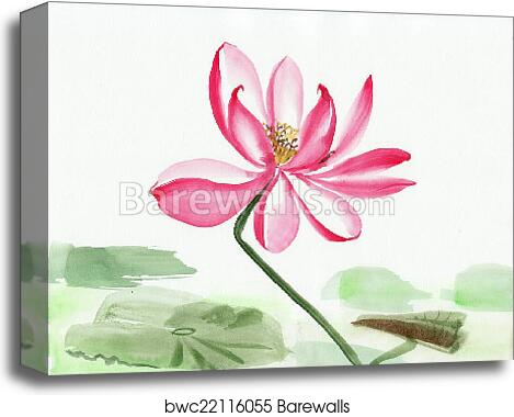 Lotus Flower Watercolor Painting Canvas Print Barewalls Posters