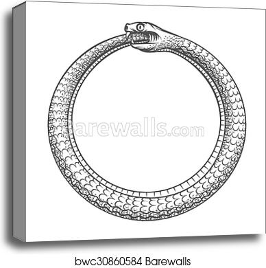 Canvas Print Of Magic Symbol Of Ouroboros Tattoo With Snake Biting