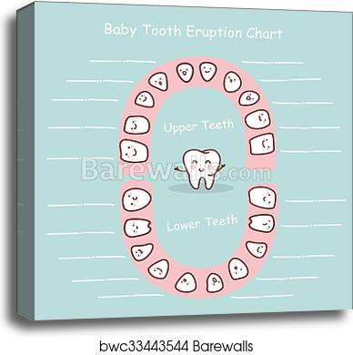 graphic regarding Baby Tooth Chart Printable referred to as Kid teeth chart history canvas print