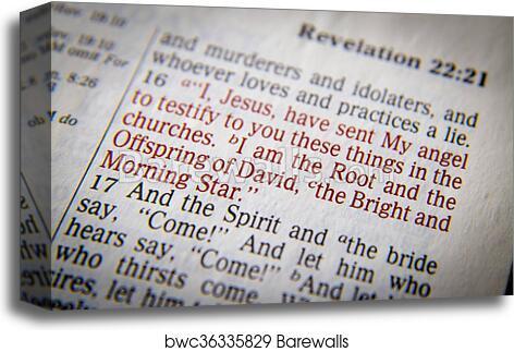 Bible text Revelation 22: 16, Canvas Print   Barewalls Posters & Prints    bwc36335829