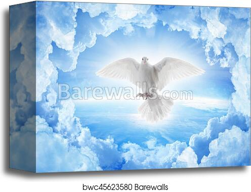 Canvas Print Of White Dove Symbol Of Love And Peace Flies Above
