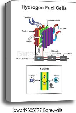 Canvas Print Of Hydrogen Diagram Barewalls Posters Prints
