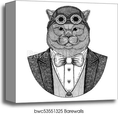 abb16911a Brithish noble cat Male Animal wearing aviator helmet and jacket with bow  tie Flying club Hand drawn illustration for tattoo