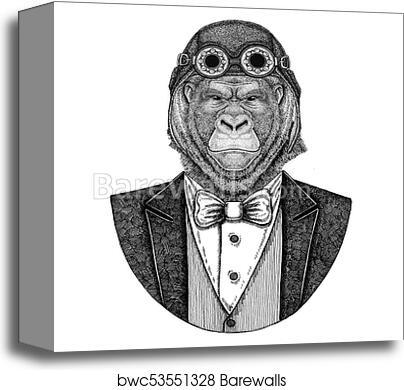 a1938e4da Gorilla