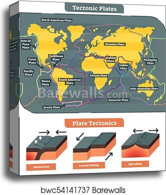 Canvas print of tectonic plates world map collection vector diagram canvas print of tectonic plates world map collection vector diagram ccuart Choice Image
