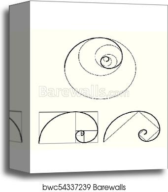 canvas print of golden ratio template set proportion symbol