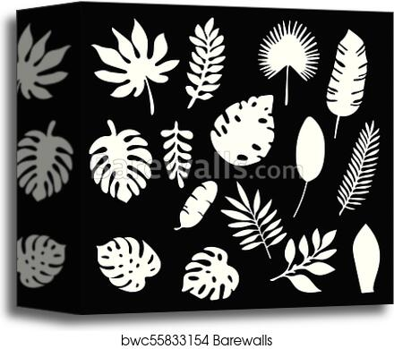 Palm Leaves Silhouettes Set Isolated On Black Background Tropical Leaf Silhouette Elements Set Isolated Palm Fan Palm Monstera Banana Leaves Vector Illustration In Black And White Colors Eps10 Canvas Print Barewalls Tropical leaves of monstera, watercolor painting. palm leaves silhouettes set isolated on black background tropical leaf silhouette elements set isolated palm fan palm monstera banana leaves