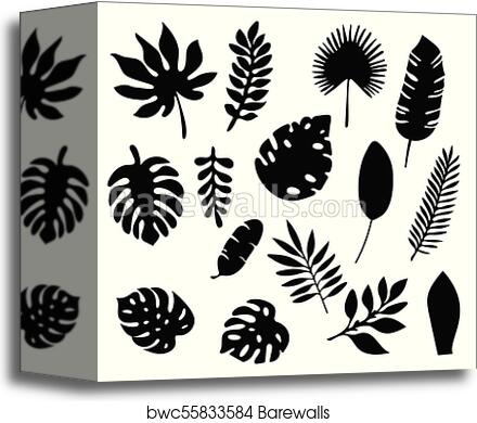 Palm Leaves Silhouettes Set Isolated On White Background Tropical Leaf Silhouette Elements Set Isolated Palm Fan Palm Monstera Banana Leaves Vector Illustration In Black And White Colors Eps10 Canvas Print Barewalls Set of 19 doodle tropical leaves clipart elements in black and white with both transparent backgrounds. palm leaves silhouettes set isolated on white background tropical leaf silhouette elements set isolated palm fan palm monstera banana leaves