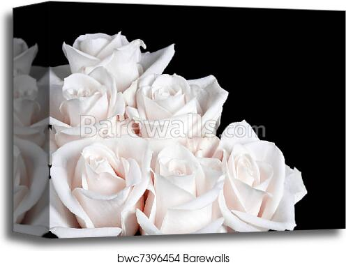 Bundle Of White Rose Art Print Canvas Home