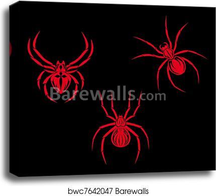 Art print POSTER CANVAS Spider Spinning Web