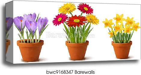 Spring Colorful Flowers In Pots Canvas Print Barewalls Posters